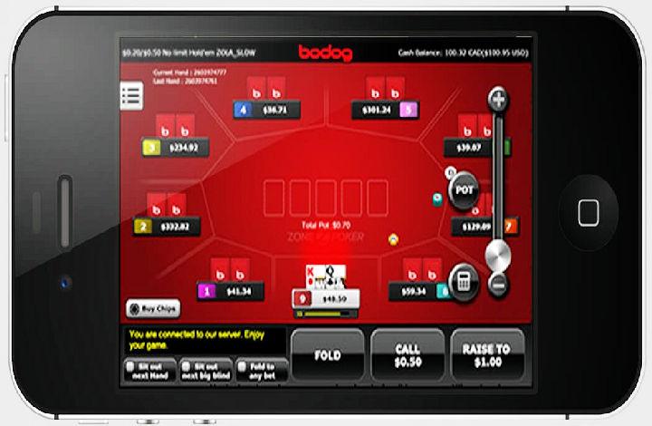 Bodog cricket betting apps
